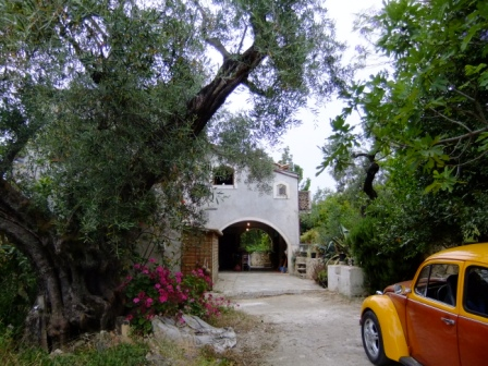 The entrance/driveway