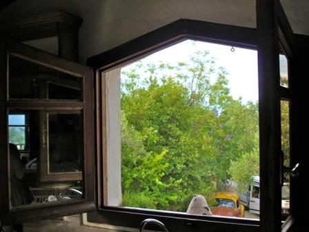 view kitchen window2
